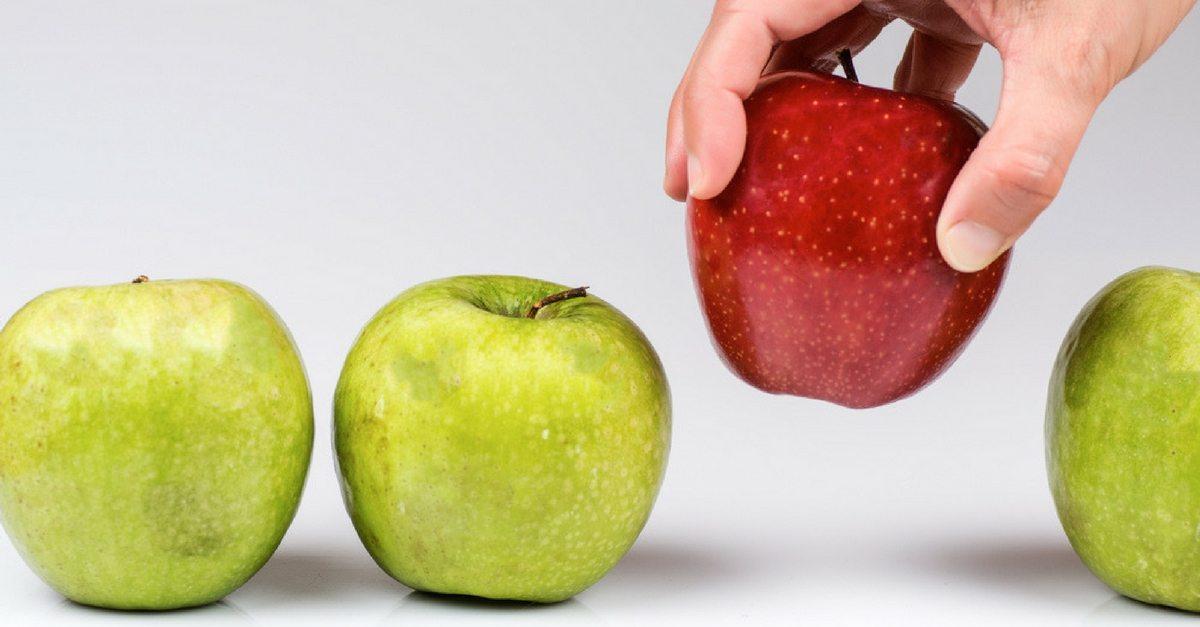 choosing-your-trustee